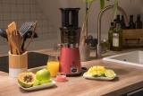 Der Nutrilovers Slow Juicer: Doppelt so schnell, aber dieser Trick ist nötig